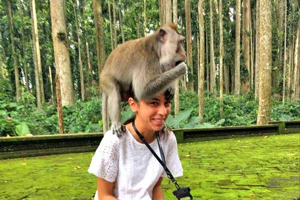 bali-ubud-monkey-forest